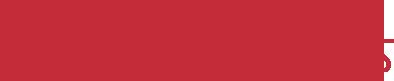 DSS Solidworks Logo